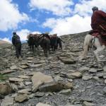 Karma-Gurung_0492